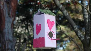 activity-birdhouse